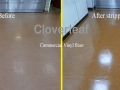 commercial floor before and after