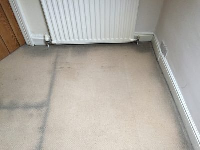black marks around edge of carpet