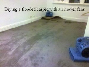 how to dry a flooded carpet