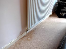 how to remove water mark stains from carpet