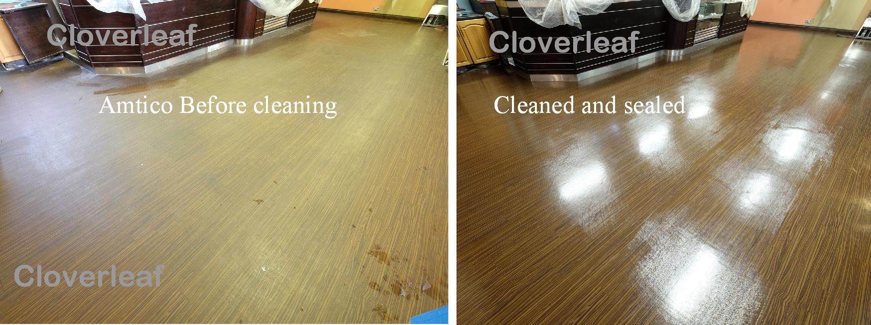 Amtico Karndean floor clean and seal Cheshire