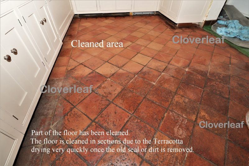 Terracotta floor removing wax