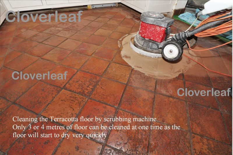 how to strip a Terracotta floor