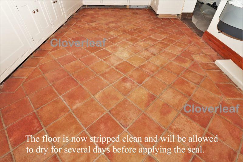 Terracotta floor stripping