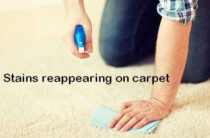 stains coming back on carpet