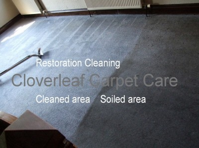 carpet dirt removal vacuum
